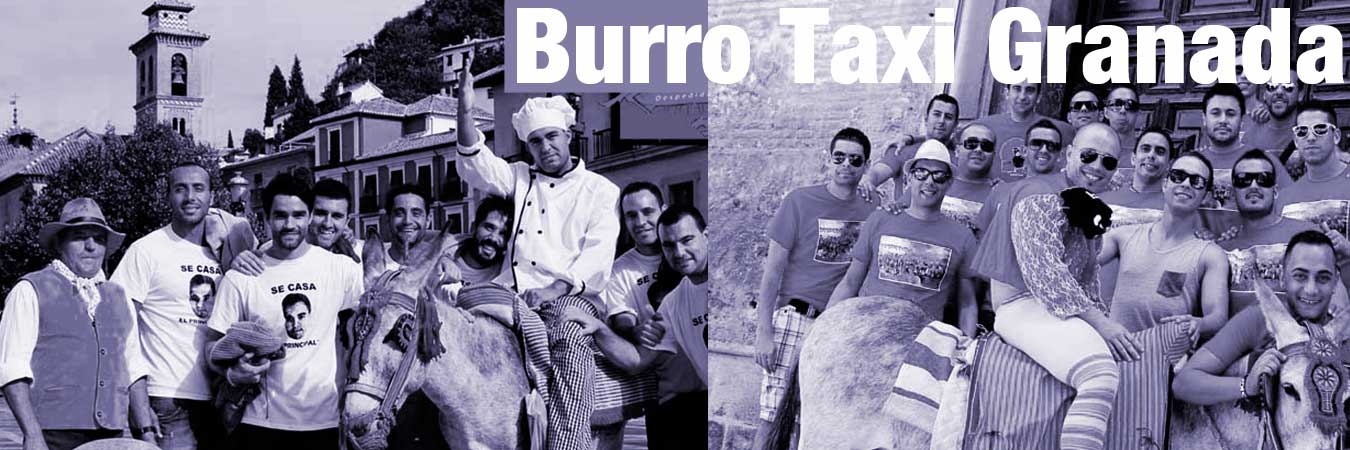 burrotaxi-granada+2