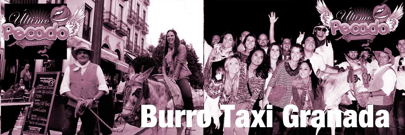 burrotaxi-granada+chicas+2